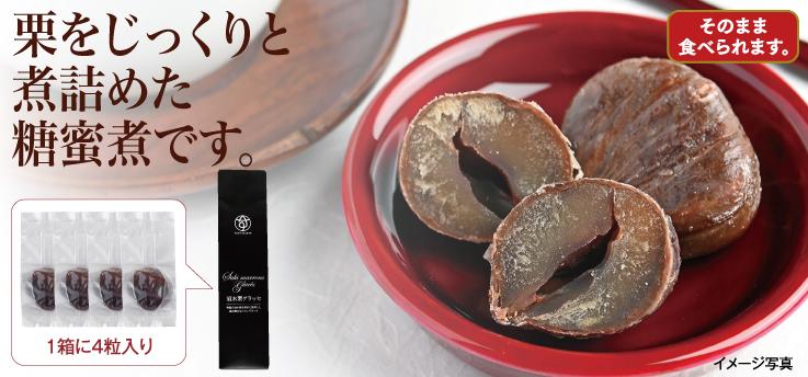 須木栗マロングラッセ