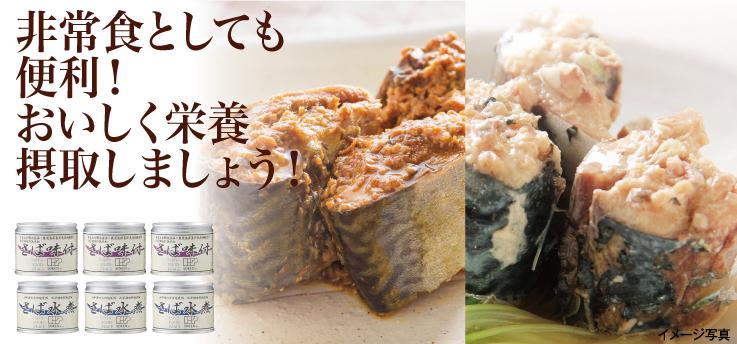 西日本産 鯖缶セット